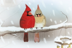 phallen1 cardinals public